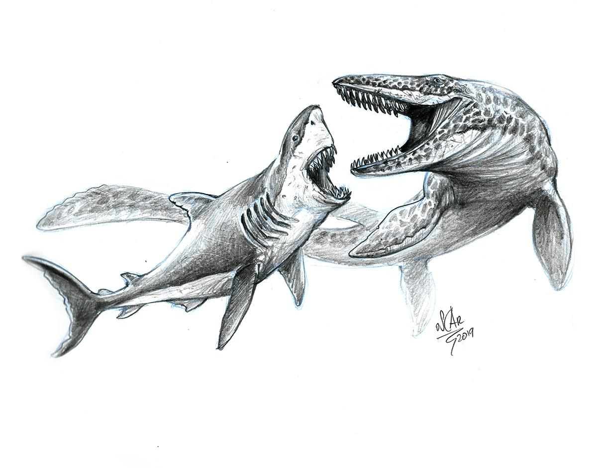 megalodon-vs-mosasaurus