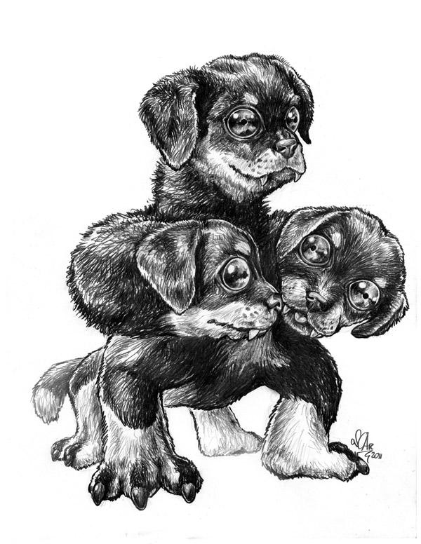 puppy_cerberus